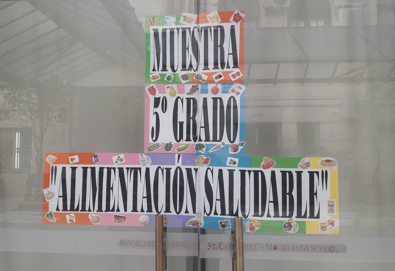 alimentacion saludable 5to (4).jpg